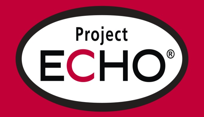 Providing Epilepsy Care To Patients In Need Project Echo