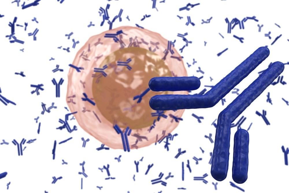 Autoimmune Etiology Suggested for Subset of Epilepsy Diagnoses
