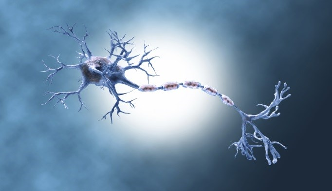 Cell Burnout May Be Source of Parkinson's