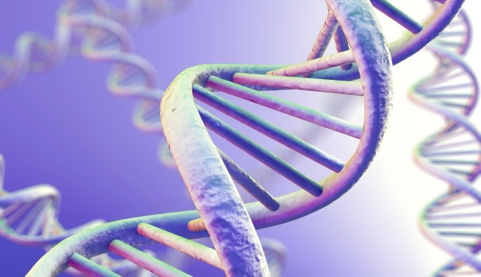 Cell-Free Circulating mtDNA May Be Biomarker for Parkinson's