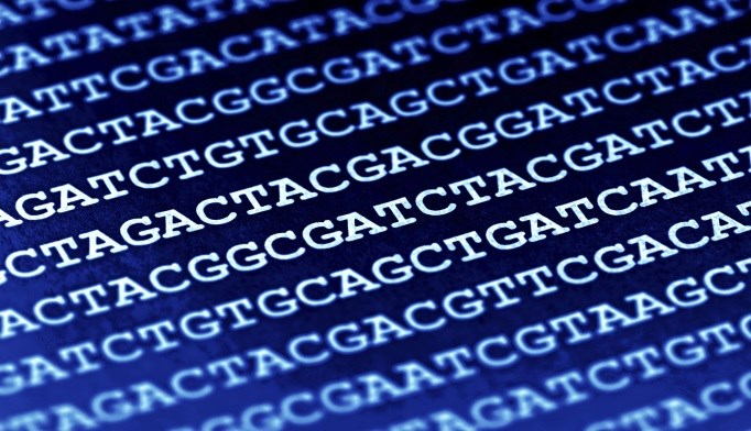 NIH Launches Genome Sequencing Program for Common, Rare Diseases