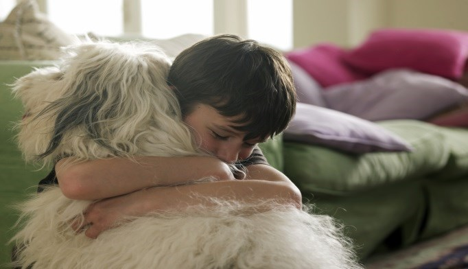 Interaction with Animals May Ease Anxiety in Autism