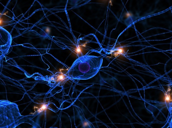 Plasma Neurofilament Light Indicative of Neuronal Damage in Huntington Disease