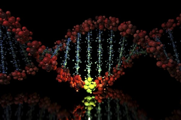 Genetic Variant Risk Score Associated With Early Markers of Alzheimer's Disease