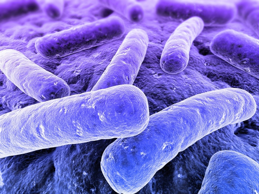 Gut Bacteria Profile Differs in Patients with Multiple Sclerosis