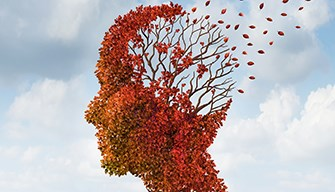 Aducanumab had a positive effect on cognitive and functional CDR scores.