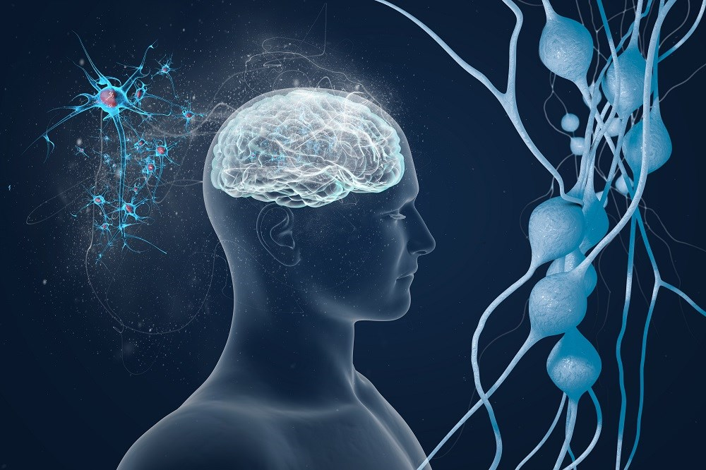 Cognitive Decline Similar After Cardiac Surgery, Catheterization