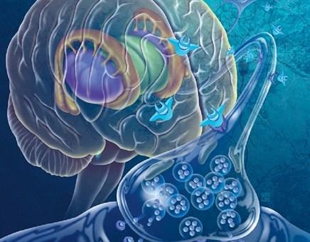 Understanding Impulse Control Disorders in Parkinson Disease: Developments and Treatments