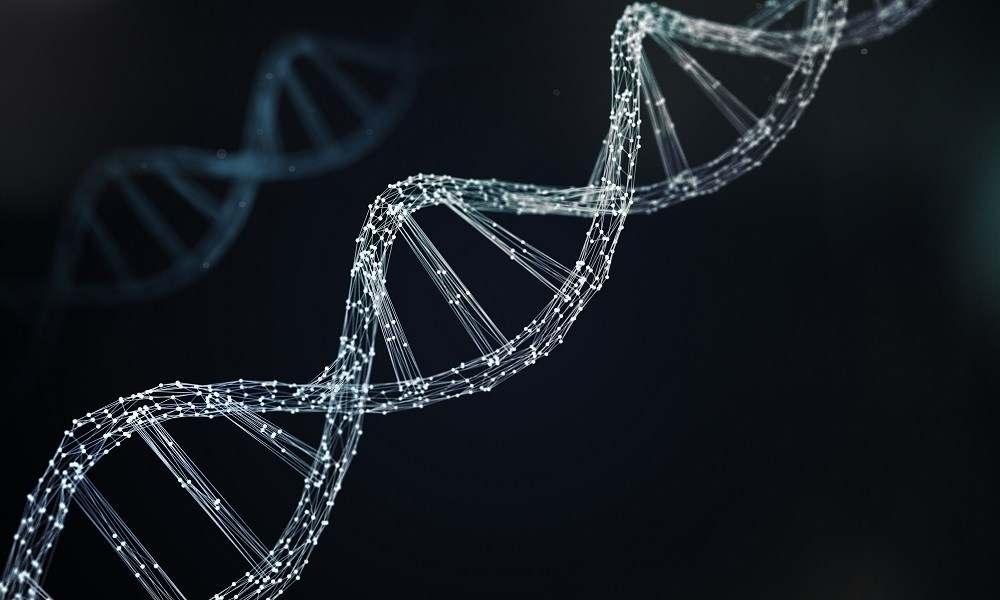 When patients with interstitial lung disease were included, 4 genes (<i>S100P, CD8B1, CCL2,</i> and <i>TIMP1</i>), along with male sex, were predictive of pulmonary arterial hypertension.