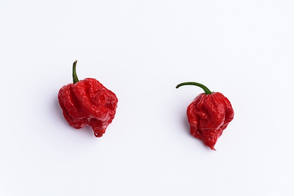 The 'Carolina Reaper' has been dubbed the hottest chili pepper in the world.