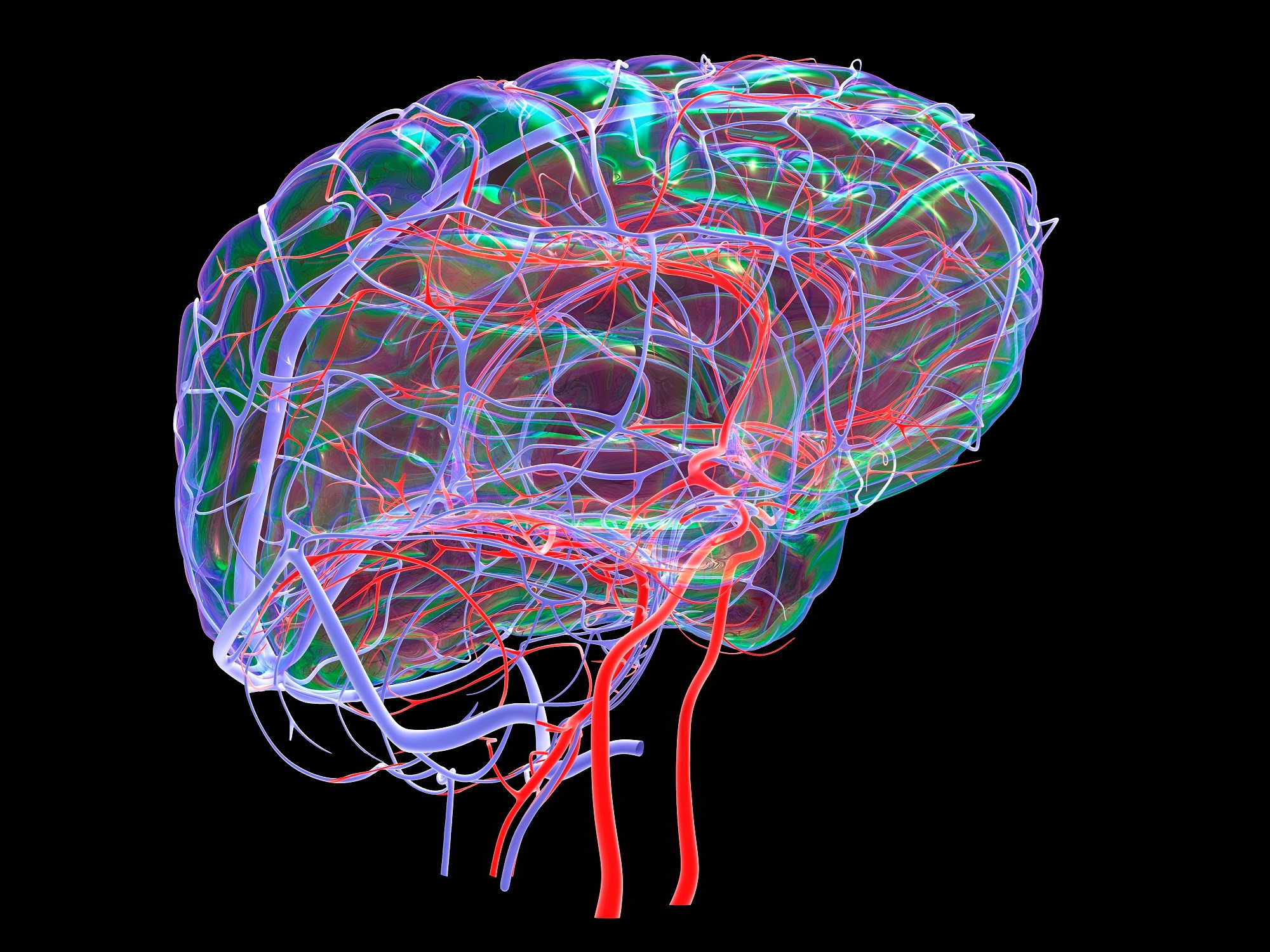 Systemic Vascular Health Associated With Widespread Brain Changes