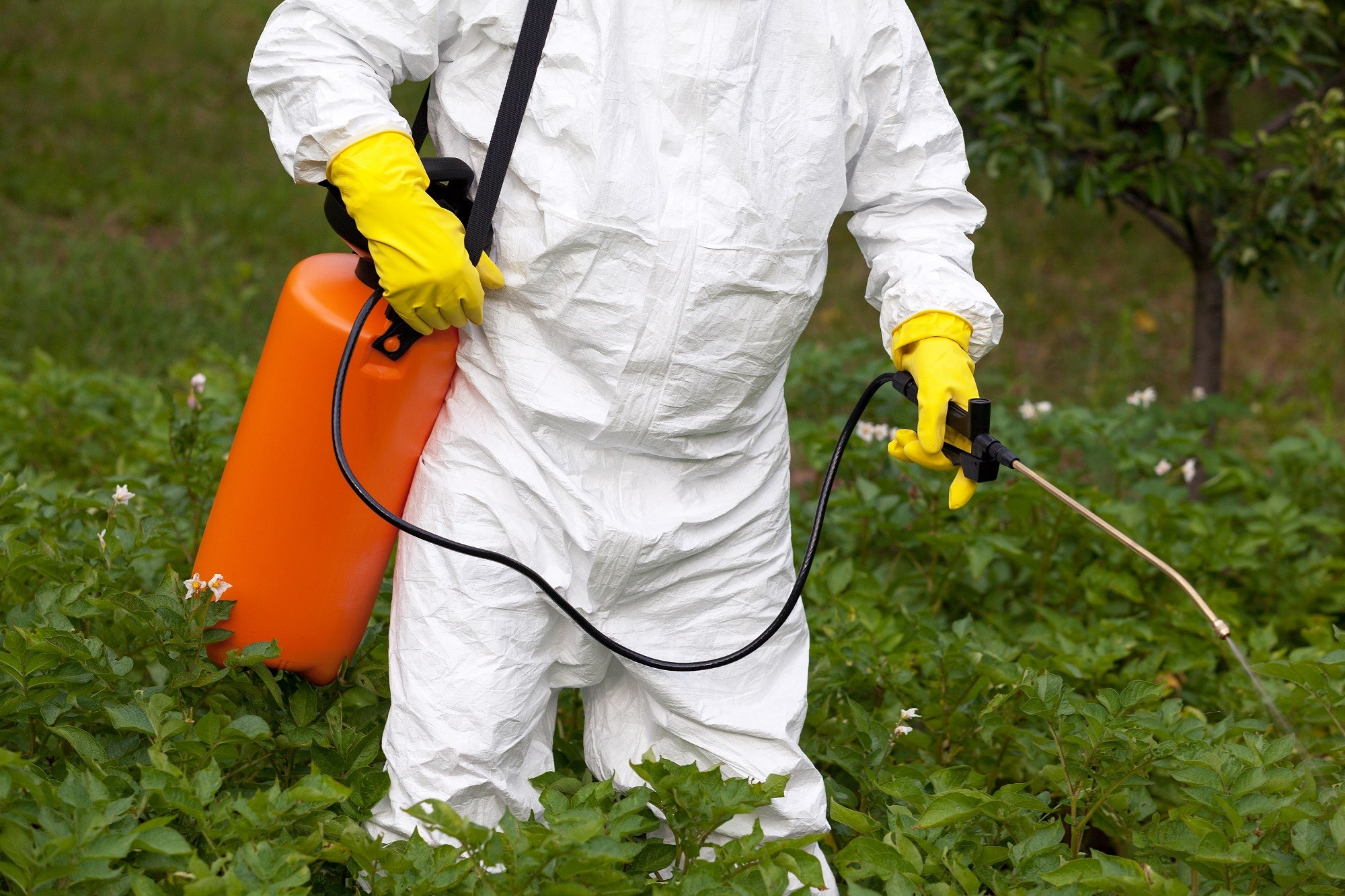 Occupational Metal, Pesticide Exposure May Be Associated With Increased CVD Risk