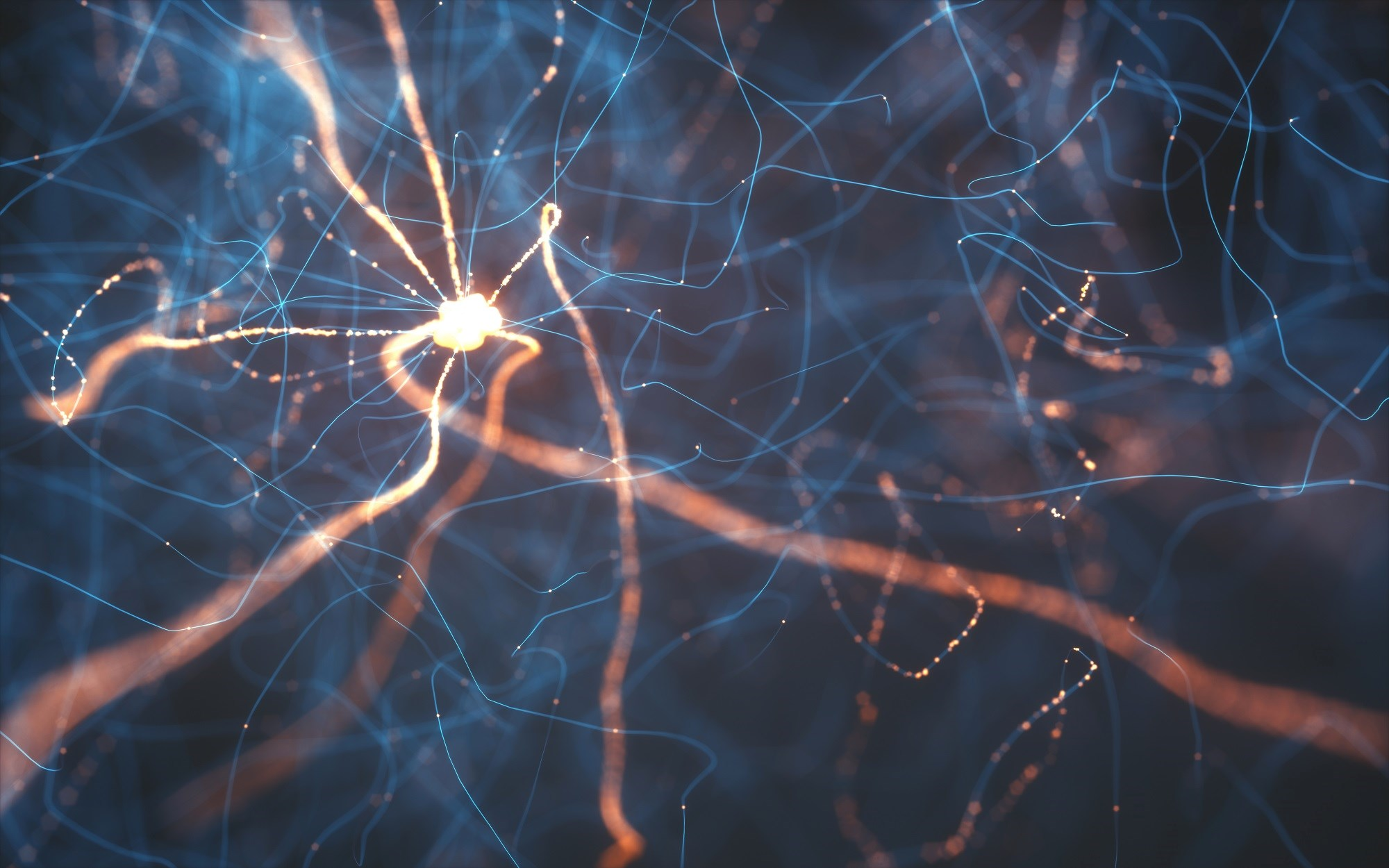 A physician encounter for cerebrovascular, central or peripheral nervous system-related disease or disorder of the same sense organs was associated with a higher odds of MS.