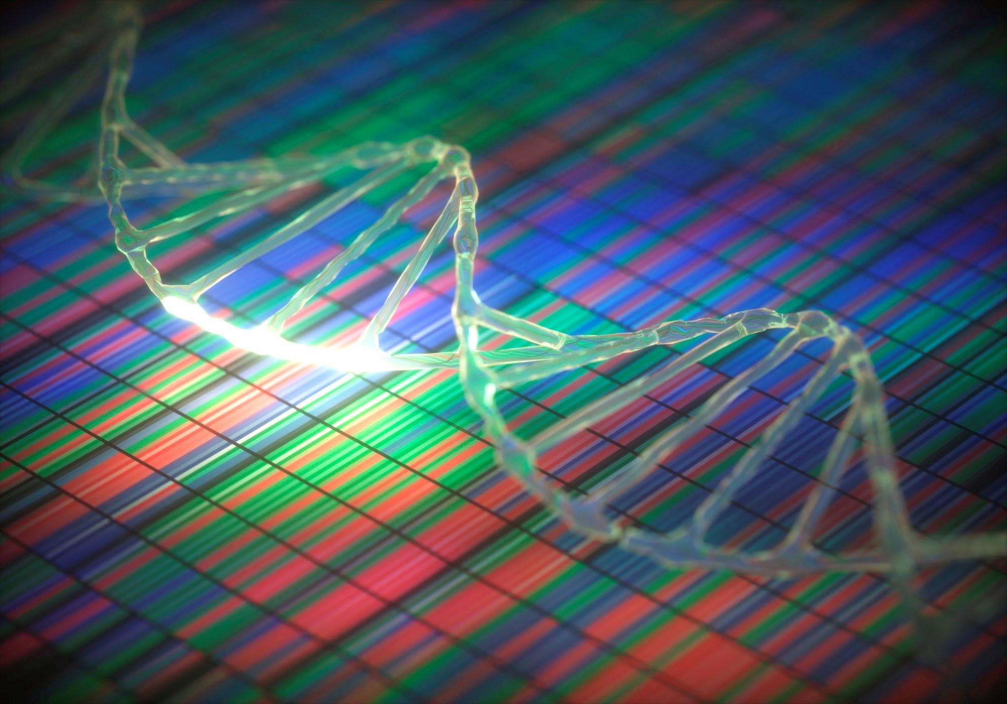 Age, Sex, APOE Genotype Identify Alzheimer's, Dementia Risk