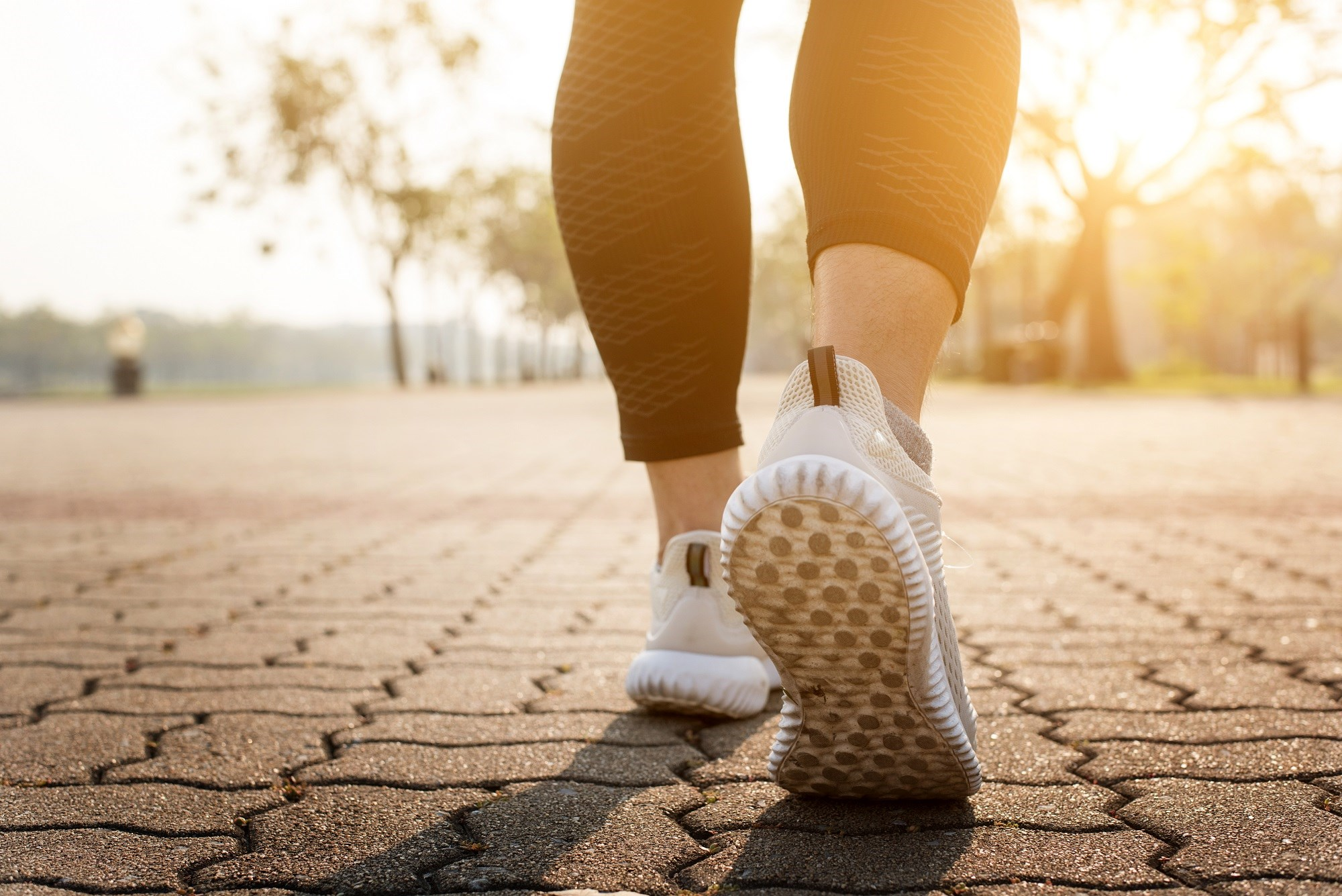 Overall, increased physical activity was associated with a reduced vascular risk factor profile in patients with multiple sclerosis.